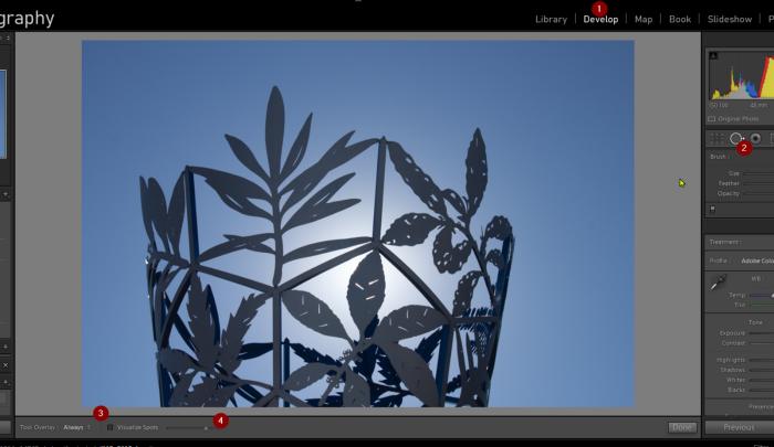 Screenshot: Author — Adobe Lightroom visualize spots interface