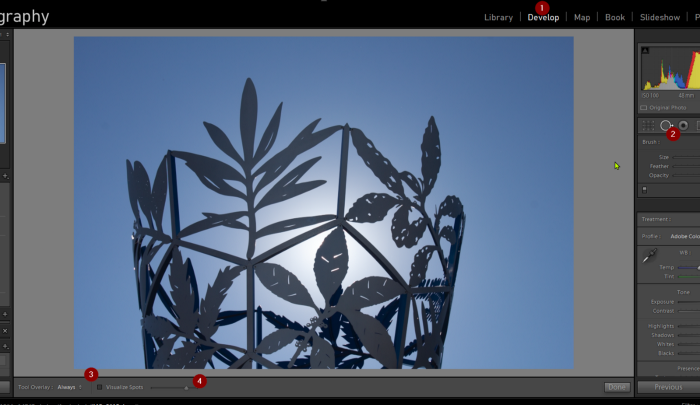 Screenshot: Author — Adobe Lightroom visualize spots interface
