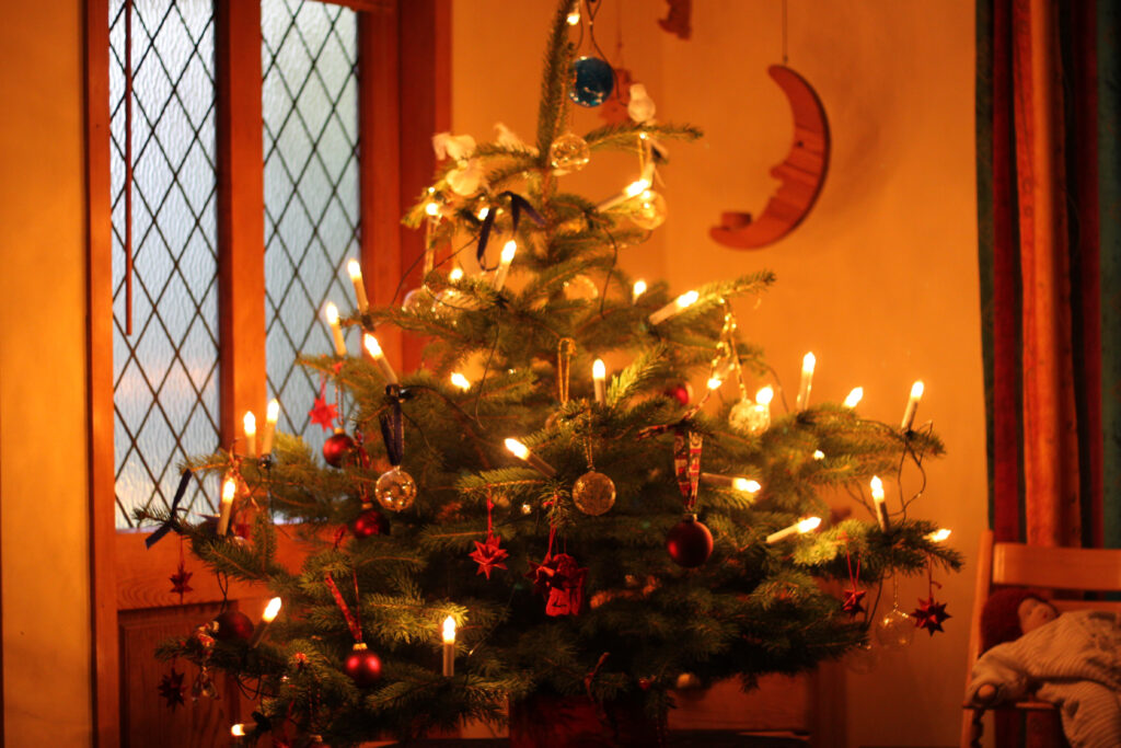 A christmas tree with orange color cast